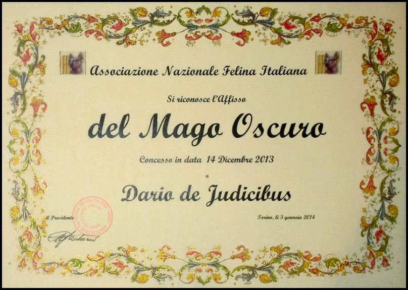 Associazione Nazionale Felina Italiana - Affisso del Mago Oscuro - 14 dicembre 2013