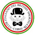 Logo del Club Italiano del British Shorthair